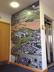 wall wraps london - wall art bristol - wall graphics plymouth