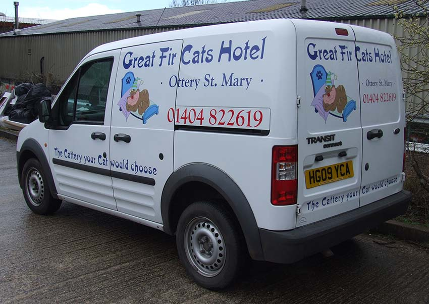 Great Fir Cattery 3